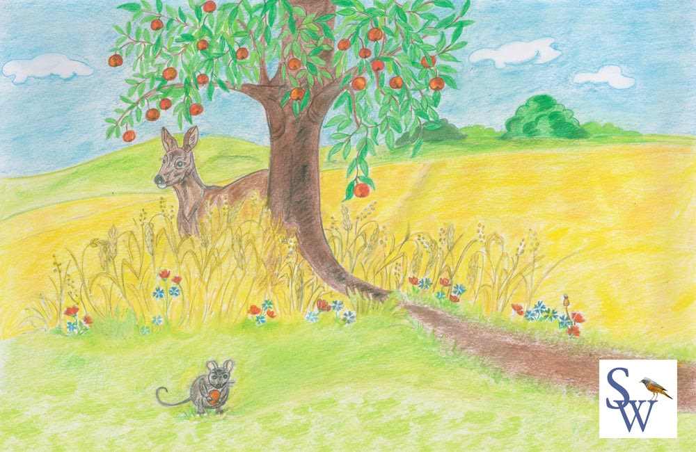 Bild aus meinem Kinderbuch Das kleine Häschen Süßmäulchen