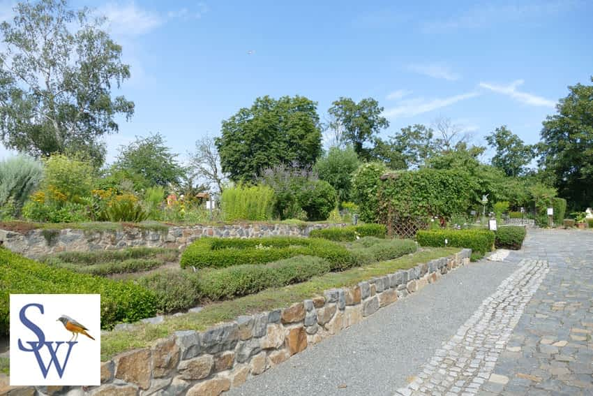 Park Canitz Thallwitz