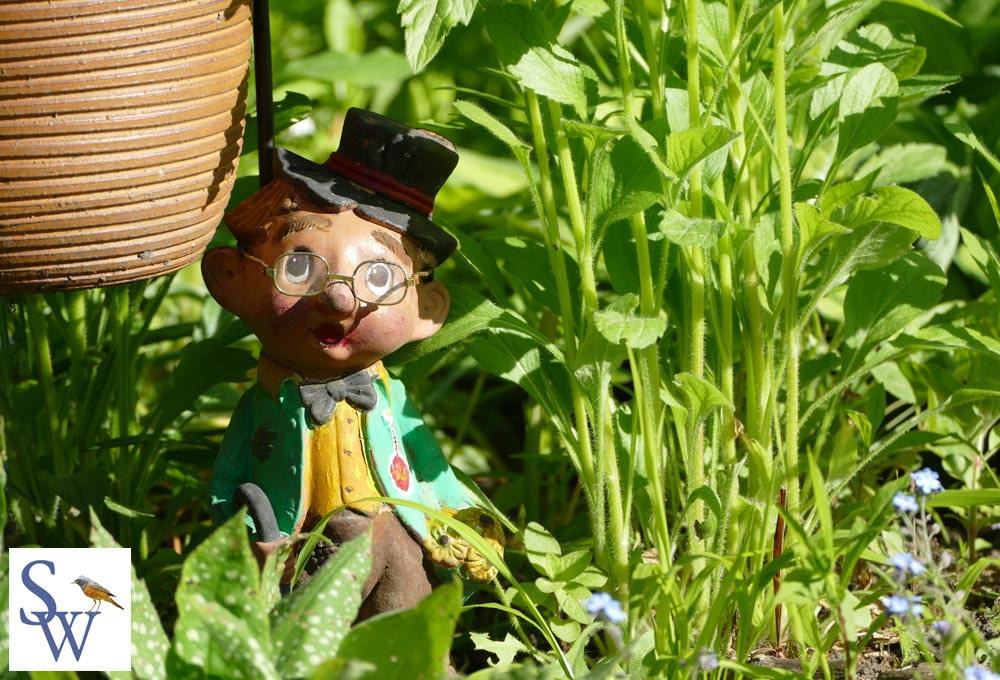 Rudi - ein kleiner Landstreicher in unserem Garten - Foto von Sylvia Wentzlau
